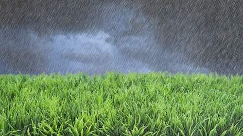 regen motormaaier